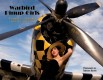 WARBIRD PINUP GIRLS COLLECTORS BOOK