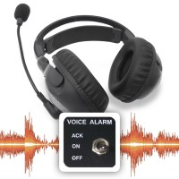 Voice/Audio